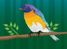 Uccello in anticipo Immagine Stock Libera da Diritti