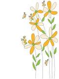 Uccello arancio della mosca di tiraggio del fiore Immagini Stock