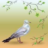 Uccello in bianco e nero con i rami di fioritura illustrazione vettoriale