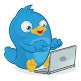 Uccello blu con il computer portatile Fotografie Stock Libere da Diritti