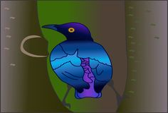 Uccello blu sconosciuto Immagini Stock