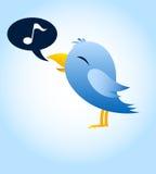 Uccello blu sociale Fotografia Stock