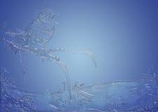 Uccello canoro dell'acqua Fotografia Stock
