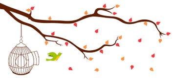 Uccello che lascia gabbia dalla filiale di albero Immagini Stock