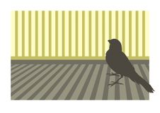 Uccello color giallo canarino 1 Immagini Stock Libere da Diritti