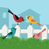 Uccello in cortile Fotografia Stock Libera da Diritti