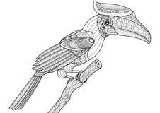 Uccello del bucero sulla progettazione dello zentangle dell'albero per il libro da colorare Fotografie Stock