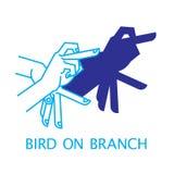 Uccello del burattino di mano dell'ombra sul ramo Fotografia Stock Libera da Diritti