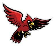 Uccello del cardinale di volo Fotografia Stock