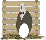Uccello del genitore con l'uovo Immagine Stock Libera da Diritti