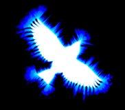 Uccello del ghiaccio Fotografia Stock