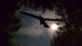 Uccello del legname Immagine Stock Libera da Diritti