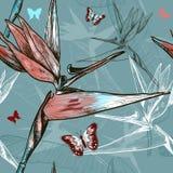 Uccello del modello senza cuciture dei fiori di paradiso illustrazione vettoriale