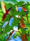 Uccello del pappagallo Fotografia Stock