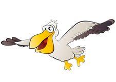 Uccello del pellicano durante il volo Fotografia Stock Libera da Diritti
