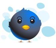 Uccello del Tweeter Fotografia Stock Libera da Diritti