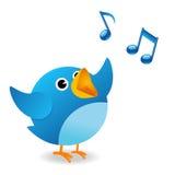 Uccello del Twitter Immagine Stock