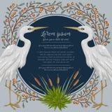 Uccello dell'airone ed e piante di palude Flora e fauna della palude royalty illustrazione gratis