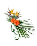 Uccello della disposizione floreale di paradiso Immagine Stock Libera da Diritti