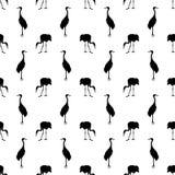 Uccello della gru su un fondo bianco Fotografie Stock Libere da Diritti