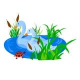 Uccello della natura Immagini Stock Libere da Diritti