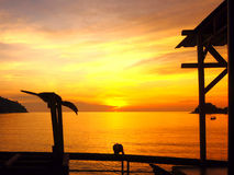Uccello della siluetta di tramonto Fotografia Stock