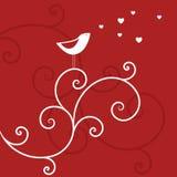 Uccello di amore Immagine Stock