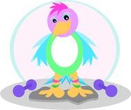 Uccello di esercitazione con i pesi Fotografia Stock