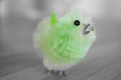 Uccello di Pasqua immagini stock libere da diritti