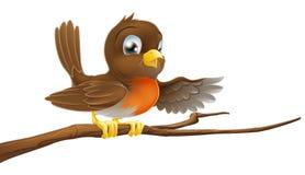Uccello di Robin sull'indicare della filiale Fotografia Stock Libera da Diritti