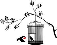 Uccello di volo con un amore per l'uccello nella gabbia Fotografie Stock Libere da Diritti