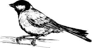 Uccello disegnato a mano Fotografia Stock Libera da Diritti