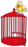 Uccello e gabbia Fotografia Stock Libera da Diritti