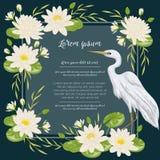 Uccello e ninfea dell'airone Flora e fauna della palude Progetti per l'insegna, il manifesto, la carta, l'invito e l'album per ri illustrazione di stock