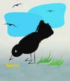 Uccello e verme fotografia stock libera da diritti