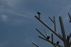 Uccello ed albero del metallo nella baia di scoperta Immagine Stock Libera da Diritti