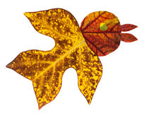 Uccello fatto dalle foglie di autunno Fotografia Stock