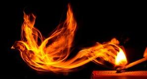 Uccello fatto di fuoco Fotografie Stock