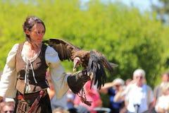 Uccello femminile più addomesticato Immagini Stock Libere da Diritti