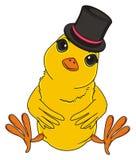Uccello giallo in black hat Immagine Stock Libera da Diritti