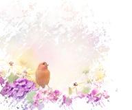 Uccello giallo con i fiori Fotografia Stock