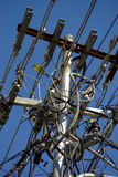 Uccello giallo sulle linee elettriche Fotografia Stock