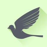 Uccello grigio Fotografie Stock