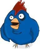 Uccello maleducato Immagini Stock Libere da Diritti