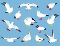 Uccello marino dell'Atlantico del fumetto royalty illustrazione gratis