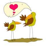 Uccello molto bello due Valentine Birds Due uccelli divertenti del fumetto Due uccelli pazzi nell'amore Due coppie dell'uccello d Immagini Stock Libere da Diritti