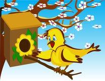 Uccello nel birdhouse Immagine Stock
