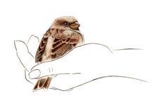 Uccello nella mano illustrazione vettoriale