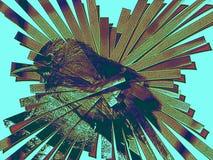 Uccello nelle strisce fatte dell'ala della farfalla Fotografia Stock