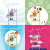 Uccello in quattro stagioni Fotografia Stock